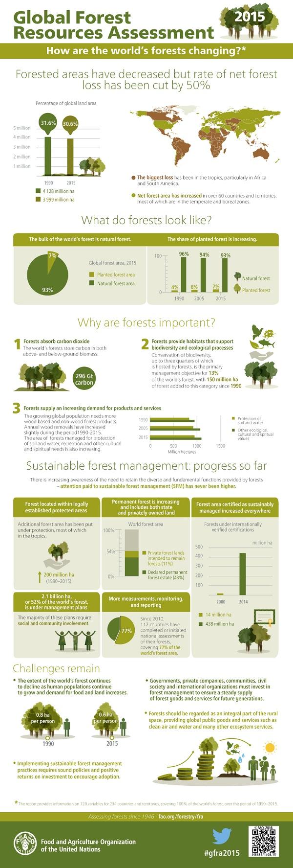 FAO-Infographic-GFRA2015-en 2