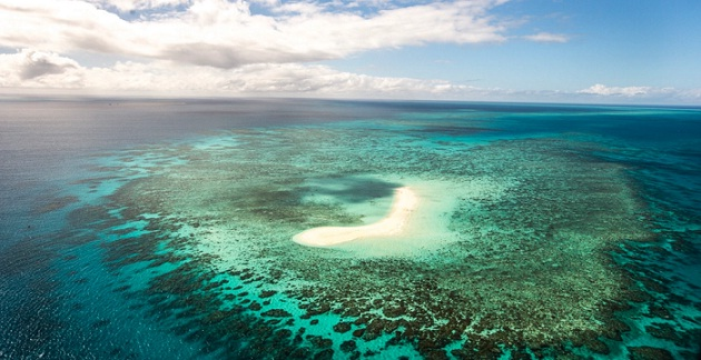 The Great Barrier Reef. PHOTO BY WWF