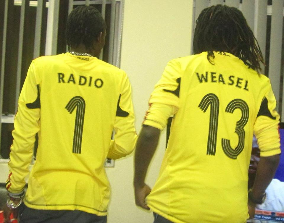 Radio and weasel 1