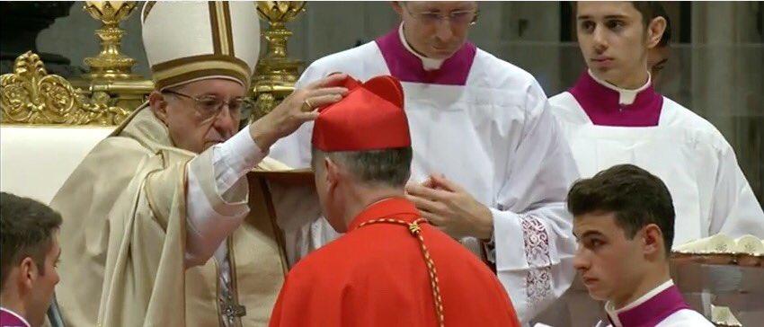 pope-francis-cardinals
