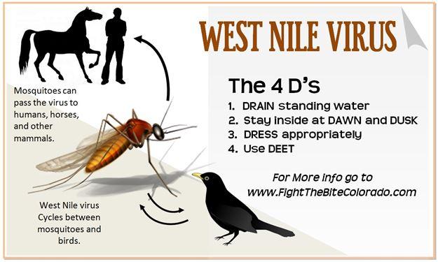west-nile-1