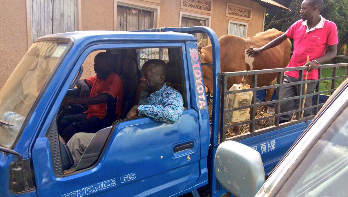 Besigye's attempts to auction cow were thwarted. He could not leave home.