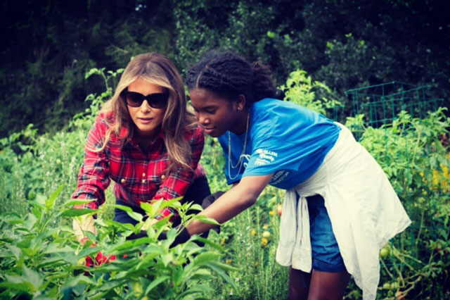 Melania Trump Harvests Michelle Obama S Vegetable Garden Uganda Today
